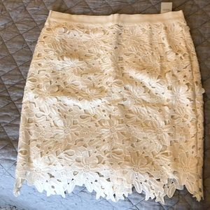 Loft pencil skirt.  NWT size 6p